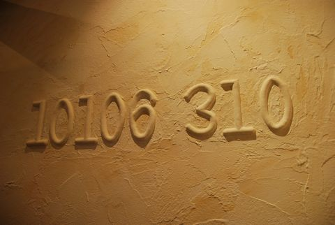 10106-310