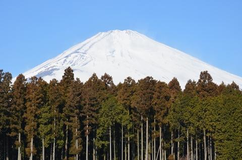 富士高原研修所