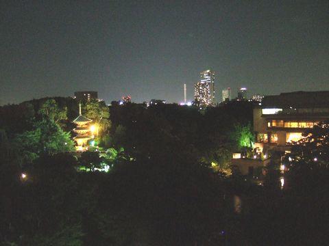 フォーシーズンズホテル椿山荘のデラックスツインガーデンビューからの夜景