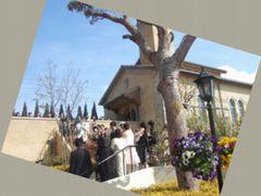 ララマリーでの結婚式