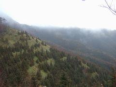 莇ヶ岳登山途中の風景